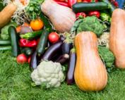 Organic diet reduces cancer risks