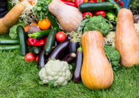 Organic diet reduces cancer risks