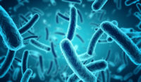 Gut bacteria and heart health