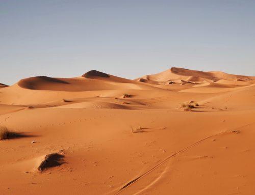 Vaginal Dryness & Libido Tips for Hypothyroidism: So Long, Sahara!